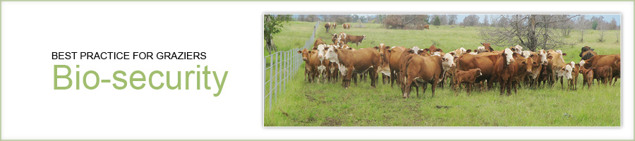 Best practice for graziers - biosecurity